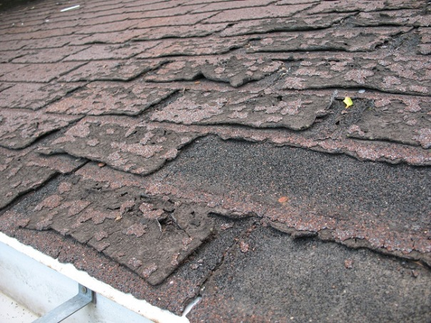 Roofing Contractors Are the Best Choice for Roof Inspection